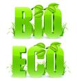 Bio and Eco words vector image vector image