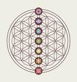 Chakra icons on sacred geometry design vector image