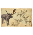 Animals theme REINDER - hand drawn pack vector image