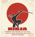 ninja retro poster black vector image
