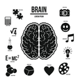 Human brain infographics set simple style vector image
