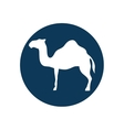 camel animal silhouette vector image