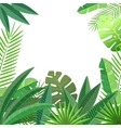 Tropical leaves floral design vector image