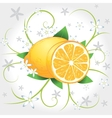 Lemons whole and slices vector image