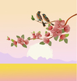 Evening in the garden blooming cherry vector image