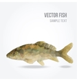 Modern polygon of carp fish vector image