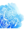 ink drawn white peony at blue watercolor vector image