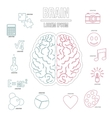 Human brain infographics set outline style vector image