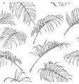 hand drawn palm fronds pattern vector image vector image