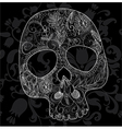 skull woven lace vector image