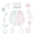Human brain infographics set outline style vector image