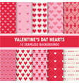 Valentines Day Heart Patterns vector image