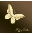Gold Lace butterfly on chocolate background vector image