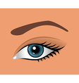 close up eye isolated - vector image