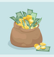 bag with coins and banknotes flat style vector image