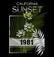 california typography graphics t-shirt printing vector image