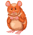 Little hamster with happy face vector image