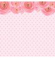 Pink Rose Background vector image