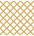 rope seamless background vector image