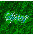 floral word spring over grass background vector image
