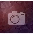 SLR Camera in flat style icon vector image