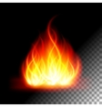 Abstract lfire flame light on transparent vector image vector image