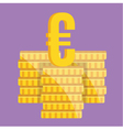 Coin Stacks and Euro Sign Icon vector image
