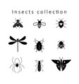 set of different insects vector image