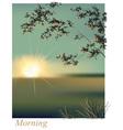 Morning sunrise summer vector image