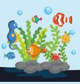 sea life design vector image