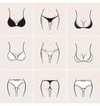 Sexy women bra and panties icons logos vector image