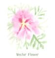 Gentle pink watercolor flower vector image