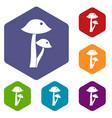 honey fungus icons set hexagon vector image
