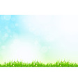 Fresh green grass with blue bokeh and sunlight vector image vector image