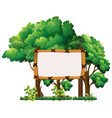 Wooden sign in forest vector image