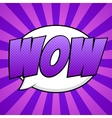 Wow comic background vector image vector image