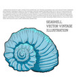seashell vintage stylized as hand-drawn sketch vector image