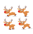 set of christmas with deers for design vector image