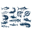 fishes species isolated icons vector image
