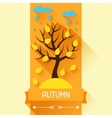 Seasonal with autumn tree in flat vector image vector image