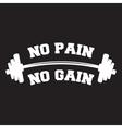 No pain no gain Lettering vintage typographic vector image
