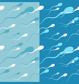 spermatozoons seamless pattern vector image