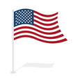 USA flag on white background Developing United vector image