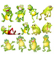Set of frogs vector image