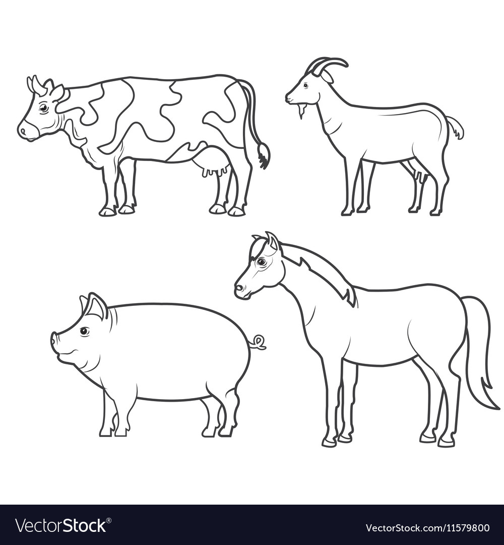 Animals farm domestic icon vector