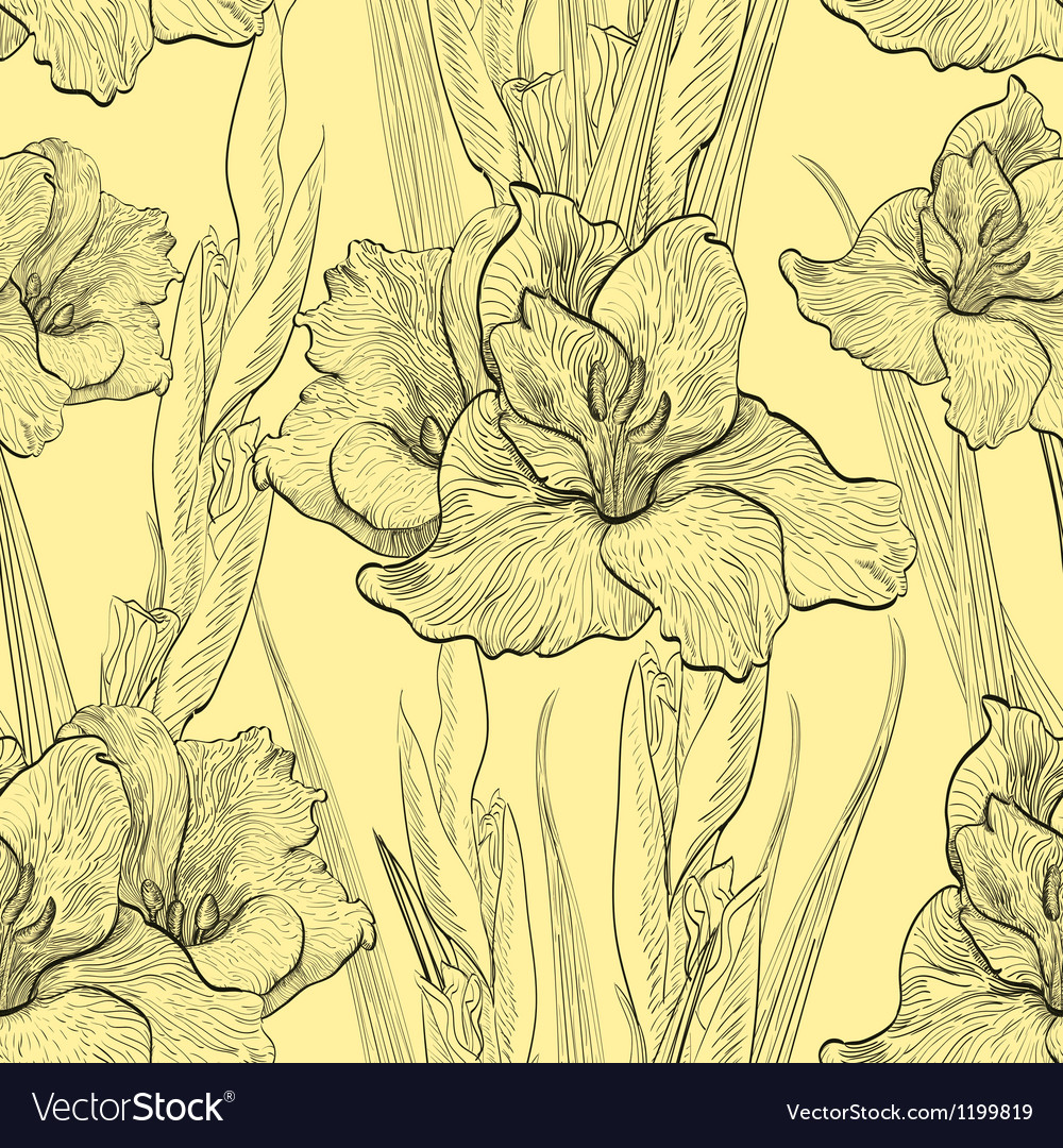 Handwritten seamless pattern with gladiolus vector