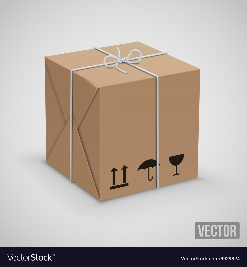 Wraped box vector