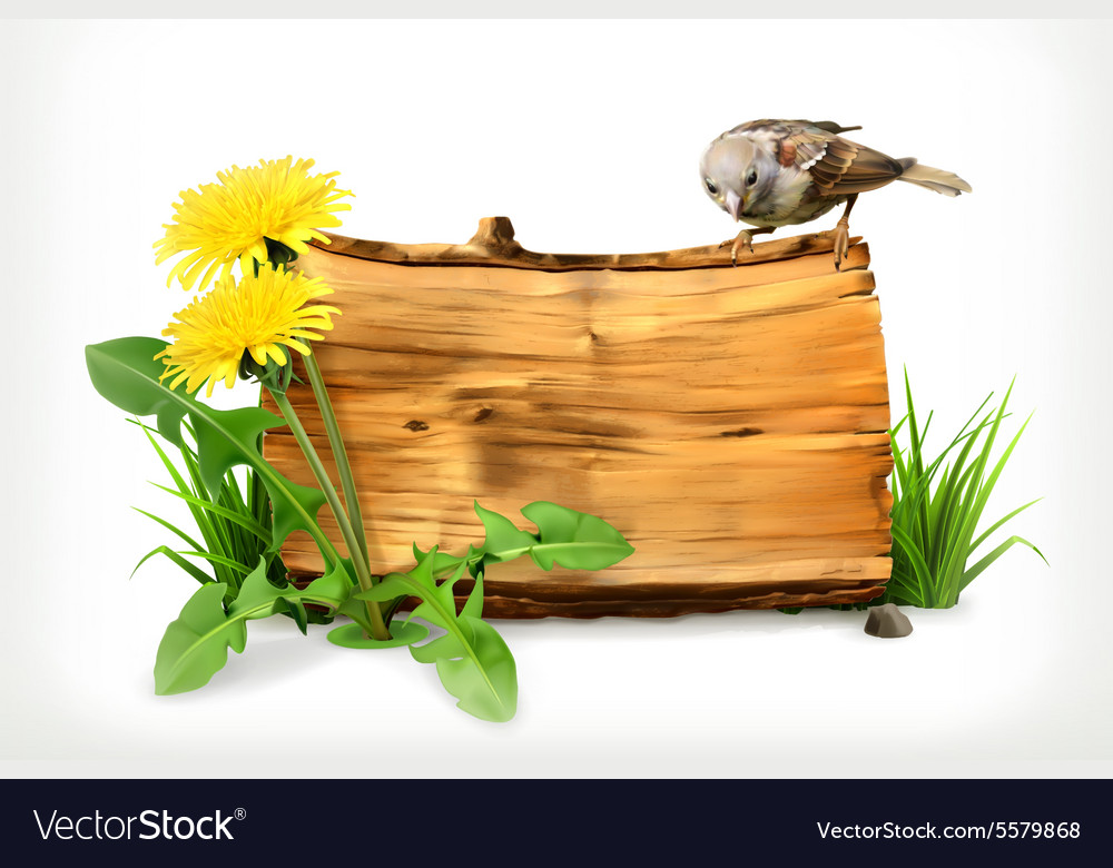 Wooden banner dandelion and green grass vector