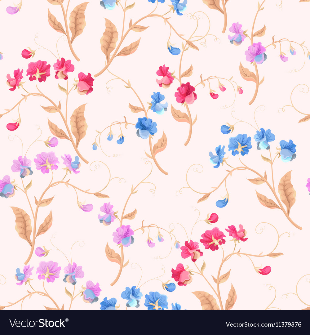Seamless sweetpea flowers vector