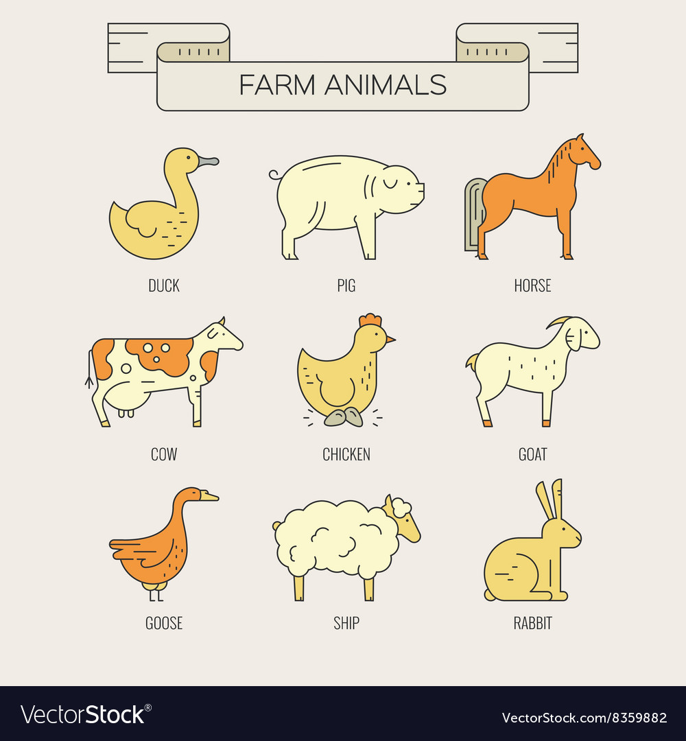 Animals on farm vector